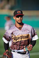 Rochester Red Wings center fielder Byron Buxton (25) before a game against the Lehigh Valley IronPigs on June 29, 2018 at Frontier Field in Rochester, New York.  Lehigh Valley defeated Rochester 2-1.  (Mike Janes/Four Seam Images)
