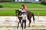 February 28, 2021: Windmill #8 , ridden by Joseph Talamo wins the Dixie Belle Stakes for trainer J. Larry Jones at Oaklawn Park in Hot Springs,  Arkansas.  Ted McClenning/Eclipse Sportswire/CSM