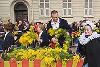 Europe/France/06/Alpes-Maritimes/Nice: Défilé du Carnaval de Nice-le corso fleuri