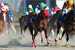 FUCHU,JAPAN-FEBRUARY 18: Nonkono Yume #12,ridden by Hiroyuki Uchida,wins the February Stakes at Tokyo Racecourse on February 18,2018 in Fuchu,Tokyo,Japan (Photo by Kaz Ishida/Eclipse Sportswire/Getty Images)