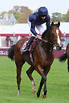 October 06, 2019, Paris (France) - Armory (6) with Ryan Moore up at the Qatar Prix Jean-Luc Lagardere (Gr I) on October 6 in ParisLongchamp. [Copyright (c) Sandra Scherning/Eclipse Sportswire)]