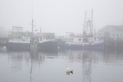 Portsmouth Harbor in Portsmouth, New Hampshire USA during foggy conditions