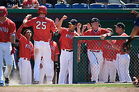Batavia Muckdogs first baseman Sean Reynolds (25) is congratulated by teammates, including Gerardo Nunez (1), Igor Baez (29), Jesus Merchan (10), Jason Erickson (51), Matt Brooks (15), and RJ Peace (22), after scoring a run during a game against the State College Spikes on July 8, 2018 at Dwyer Stadium in Batavia, New York.  Batavia defeated State College 8-3.  (Mike Janes/Four Seam Images)