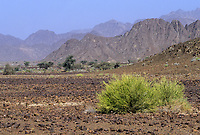 Rustaq, Oman.  Landscape near Rustaq.