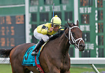 1 August 10: Hudson Steele and jockey Jose Lezcano win The Jersey Derby on Haskell Invitational Day at Monouth Park in Oceanport, New jersey