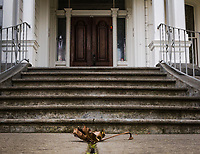 A single brown leaf lies on the ground before concrete stairs leading to a grand double-door entry to a mansion that is the central feature of a neighborhood park.