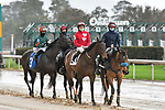February 28, 2021: Mariah's Princess #2 , ridden by David Cabrera in the Dixie Belle Stakes for trainer Philip A. Bauer at Oaklawn Park in Hot Springs,  Arkansas.  Ted McClenning/Eclipse Sportswire/CSM