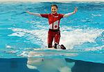 "April 26, 2017, Yokohama, Japan - Kanako Momota, a member of Japanese girls only pop group ""Momoiro Clover Z"" (MCZ) rides on the back of a white beluga at the aquarium of the Hakkeijima Sea Paradise in Yokohama, suburban Tokyo on Wednesday, April 26, 2017. The aquarium will start the new attraction with sea aninals featuring a MCZ's TV program for children from April 28.   (Photo by Yoshio Tsunoda/AFLO) LwX -ytd-"