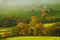 Farndale farm with autumn colours at sunset, North Yorkshire Moors National Park, England.