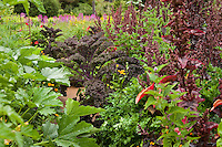 Organic mixed garden with vegetables, herbs, and flowers in California wine country garden; Lynmar Estate Winery