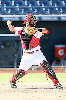 Devin Mesoraco - Peoria Saguaros - 2010 Arizona Fall League.Photo by:  Bill Mitchell/Four Seam Images..