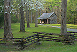 Great Smoky Mountains National Park, Tennessee:<br /> Cades Cove, the Carter Shields cabin with split rail fence and flowering dogwood in early spring