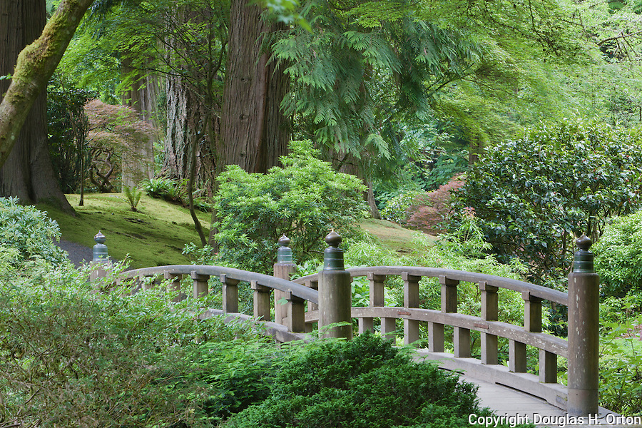 A bright rainy day brings out the color around the Moon Bridge.  Portland, Oregon, Japanese Garden.  The Japanese Garden in Portland is a 5.5 acre respit.  Said to be one of the most authentic Japanese Garden's outside of Japan, the rolling terrain and water features symbolize both peace and strength.