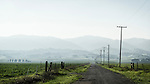 Country road to the Capay Hills, power poles, late winter, Hungry Hollow, Yolo County, Calif.