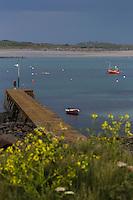 Royaume-Uni, îles Anglo-Normandes, île de Guernesey, Saint-Samson: Bateau de pêche à Rousse// United Kingdom, Channel Islands, Guernsey island, St-Samson