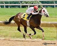 Win Picture winning at Delaware Park on 6/24/13
