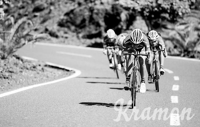 Team Trek-Segafredo winter training camp with Alberto Contador <br /> <br /> january 2017, Tenerife/Spain