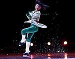 2011 Disney on Ice Princess Wishes