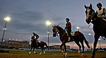LOUISVILLE, KY - MAY 02: Scenes from the backside during morning workouts for the Kentucky Derby and Kentucky Oaks at Churchill Downs on May 2, 2016 in Louisville, Kentucky. (photo by Scott Serio/Eclipse Sportswire/Getty Images)