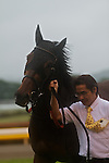 Erin Court wins the Japanese Oaks at Tokyo Racecourse in Tokyo on May 22, 2011