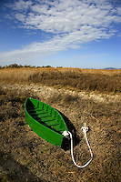 A green boat is seen in the national park of Las Tablas de Daimiel, in Ciudad Real on November 16, 2009. The European Union launched an investigation into Spanish wetland that has turned bone dry through mismanagement of water resources  from areas where fish once swam. The EU wants the Spanish government to explain how it plans to save Las Tablas de Daimiel National Park.The park, one of Spain's few wetlands, is classified as a UNESCO biosphere site and an EU-protected area because of its birdlife. But it has been drying up for decades, largely because of wells dug by farmers on the edges of the park to tap an aquifer that feeds the wetland's lagoons. Many of the wells are illegal. Environmentalists call this case a particularly glaring example of how a natural resource can be abused. (c)Pedro ARMESTRE