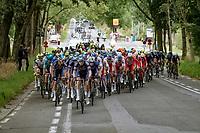 Senne Leysen (BEL/Alpecin-Fenix) setting the pace<br /> <br /> Grote Prijs Marcel Kint 2021<br /> One day race from Zwevegem to Kortrijk (196km)<br /> <br /> ©kramon