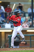 Billings Mustangs Reyny Reyes (17) at bat during a Pioneer League game against the Grand Junction Rockies at Dehler Park on August 14, 2019 in Billings, Montana. Grand Junction defeated Billings 8-5. (Zachary Lucy/Four Seam Images)