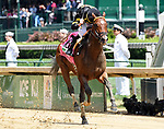 LOUISVILLE, KY - MAY 06: Wild Shot #8, ridden by Corey Lanerie, wins the Pat Day Mile Stakes  on Kentucky Derby Day at Churchill Downs on May 6, 2017 in Louisville, Kentucky. (Photo by Jessica Morgan/Eclipse Sportswire/Getty Images)