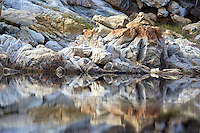 Rock Pool Reflection near Arniston, South Africa