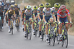 New race leader Odd Christian Eiking (NOR) and Intermarché-Wanty-Gobert Matériaux team lead the peloton during Stage 11 of La Vuelta d'Espana 2021, running 133.6km from Antequera to Valdepeñas de Jaén, Spain. 25th August 2021.     <br /> Picture: Luis Angel Gomez/Photogomezsport | Cyclefile<br /> <br /> All photos usage must carry mandatory copyright credit (© Cyclefile | Luis Angel Gomez/Photogomezsport)