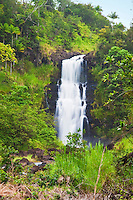 Kulaniapia Falls, tropical rainforest jungle, Hilo, Big Island.