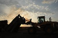 Madeira preparada para exportação com selo do Ibama e FSC na serraria da Cikel.Área de manejo sustentável para exploração madeireira da Cikel.Paragominas, Pará, BrasilFoto Paulo Santos17/11/2008