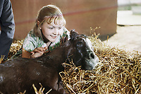 Девушка и Гранд (1981)