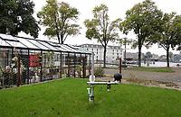 Nederland - Amsterdam- 2020.    Kunstgrasvelden tegen stadshitte. Op het Marineterrein wordt kunstgras getest dat door middel van een innovatief wateropvangsysteem onder de grasmat sporters en de omgeving verkoelt. Sinds 2019 loopt een onderzoek naar hoe kunstgras een verkoelende werking kan hebben. Bij gebouw 027 liggen vier testvelden: drie met verschillende typen kunstgras en een met natuurgras. De kunstgrasvelden zijn voorzien van het Permavoid-systeem. Dit experiment is onderdeel van Marineterrein Amsterdam Living Lab.   Foto ANP / HH / Berlinda van Dam