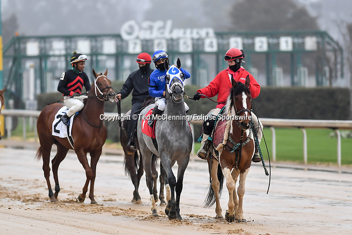 February 27, 2021: #1, Essential Quality in the post parade for the Southwest Stakes (Grade 3) at Oaklawn Park in Hot Springs, Arkansas. Ted McClenning/Eclipse Sportswire/CSM