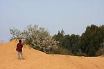 Israel, Sharon region, Dunes in Park Hasharon Nature Reserve