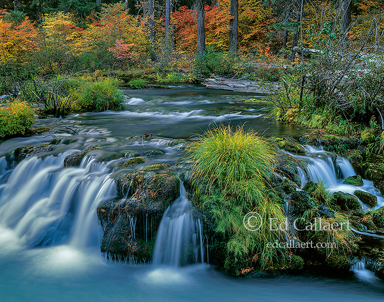 Autumn, Rogue River National Wild and Scenic River, Rogue River National Forest, Oregon