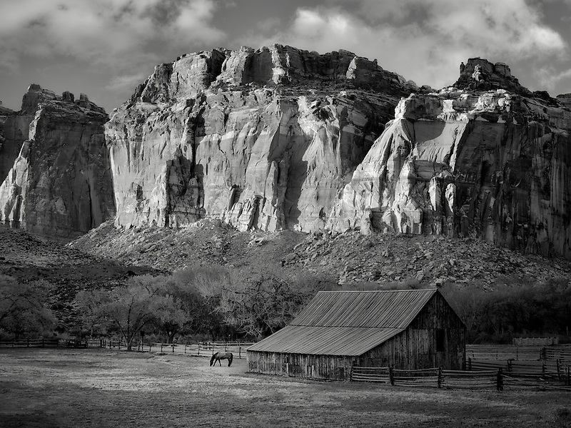 Gifford farm barn and horse. Fruita, Capitol Reef National Park, Utah