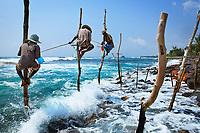 Sri Lanka, Ceylon, Southern Province, Galle, Stilt fisherman on the coast near Galle between Unawatuna and Weligama