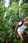 Dominica hiking. Couple hiking in rainforest near Titou Gorge.