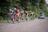 With 2 local laps to go, the final breakaway is formed cosisting of: (eventual winner) José Gonçalves (POR/Katusha-Alpecin), Laurens De Plus (BEL/QuickStep Floors), Pim Ligthart (NED/Roompot-Nederlandse Loterij), Laurens ten Dam (NED/Sunweb) & GC leader Primoz Roglic (SVK/LottoNL-Jumbo) + 2<br /> <br /> Ster ZLM Tour (2.1)<br /> Stage 4: Hotel Verviers > La Gileppe (Jalhay)(190km)
