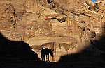 Donkey on a sandstone cliff in the ancient Jordanian city of Petra.