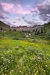 San Juan Mountains, CO<br /> American Basin at dawn with wildflower meadows beneath Handies Peak