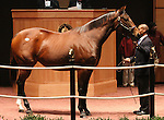 Hip #76 Bonnie Blue Flag consigned by Taylor Made Sales Agency sold for $1,500,000 at the Fasig Tipton November Sale to AARON & MARIE JONES(D CAUTHEN) on November 6, 2011.