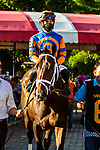 SEPT 06, 2021:WIT in the Gr.1 Hopeful  Stakes, for 2-year olds, going 7 furlongs, at Saratoga Racecourse, Saratoga Springs, New York. Sue Kawczynski/Eclipse Sportswire/CSM