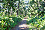 Forest Trail along Strait of Juan de Fuca.   Fort Ebey State Park.  Whibey Island, WA.  Boulders and surf.