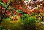 Italy, Lombardia, Bellagio: villa Melzi with park - Japanese garden | Italien, Lombardei, Bellagio: Villa Melzi mit Park direkt am Comer See - der japanische Garten