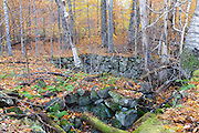 Remnants of an abandoned farmstead at Thornton Gore in Thornton, New Hampshire during the autumn months. Thornton Gore was the site of an old hill farming community that was abandoned during the 19th century. Based on an 1860 historical map of Grafton County this is believed to have been the J. Merrill farmstead.