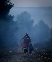 A member of the Spanish Emergency Army carries a fire hose in Torre de Macanes during a forest fire near Alicante on August 13, 2012. Emergency teams battled through the night to quell the flames in the pine forests around Torre de les Macanes north of Alicante, which claimed their first victim, a member of the firefighting team, on August 12, 2012. (c) Pedro ARMESTRE