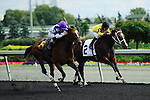 at Woodbine Race Course in Ontario, Canada on September 15, 2012.